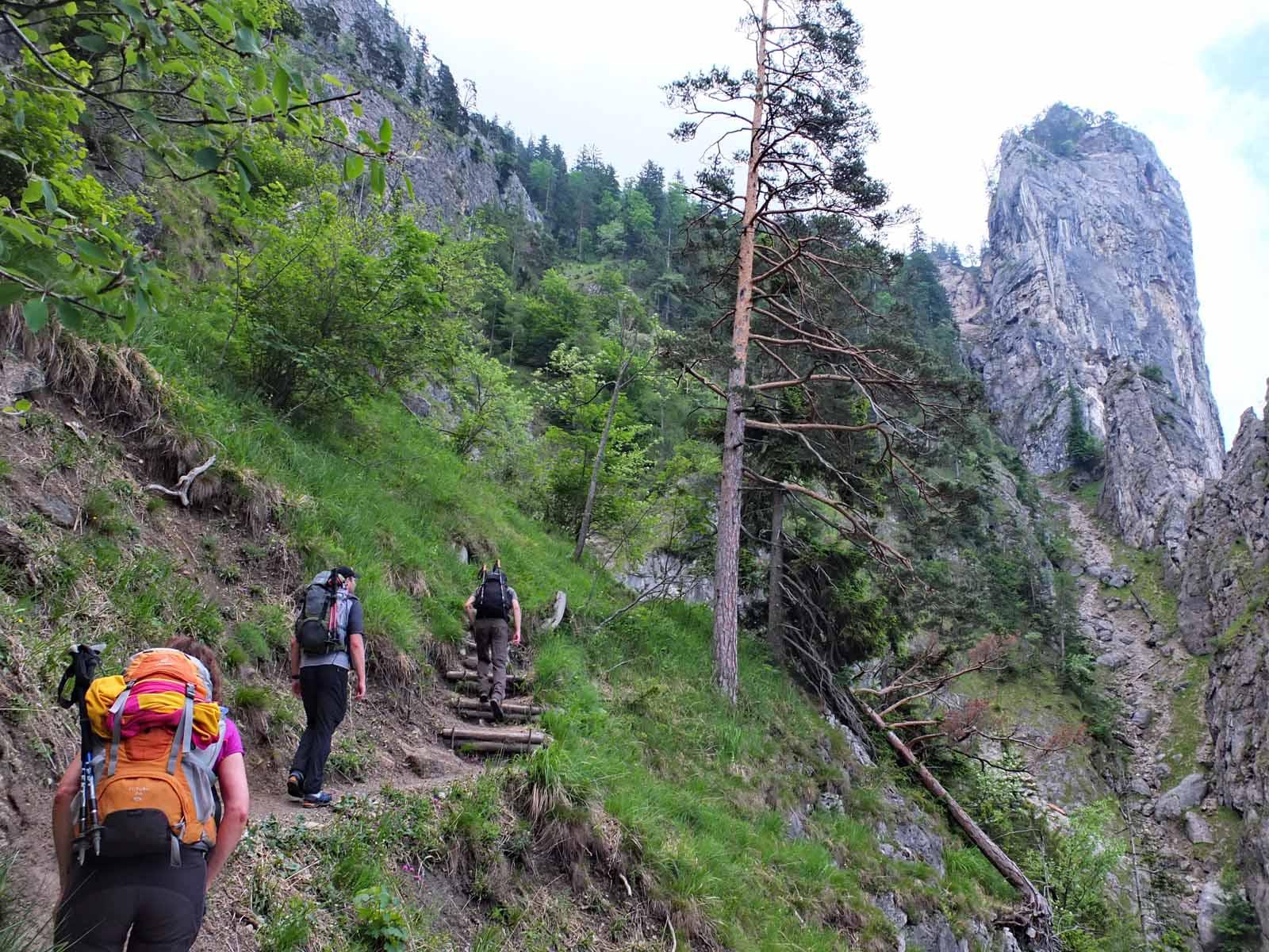 Klettersteig Traunstein : Klettersteig am traunstein 2016 u2013 dav